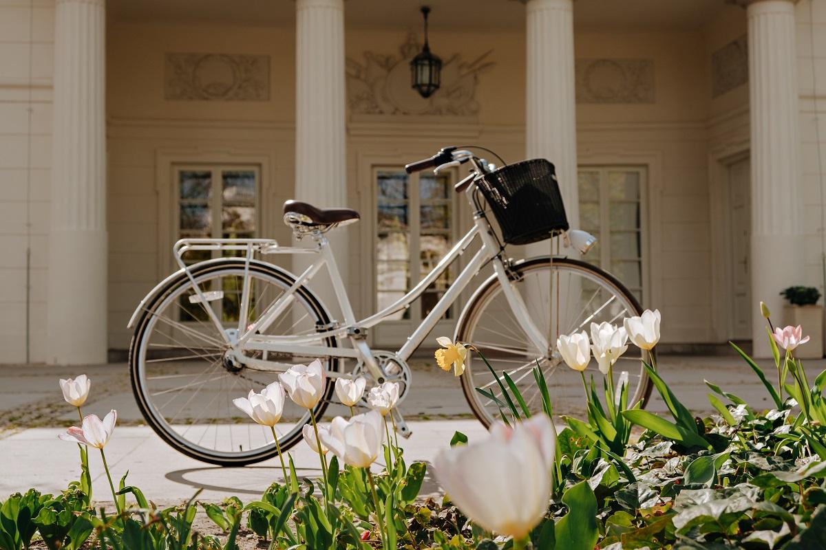 Najlepsze rowery damskie w stylu retro